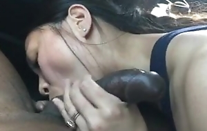 Asian Housewife Sucks her BBC Boyfriend with along to Back of Car